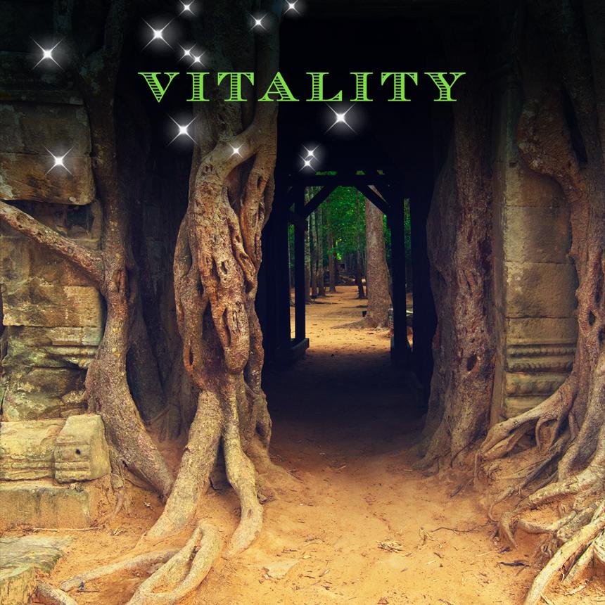 Door of Vitality