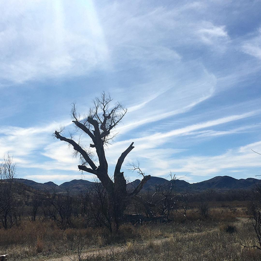 Fluent Self desert sky